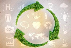 חדשנות וקיימות בכלכלה